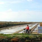 Promenade à vélo dans le marais